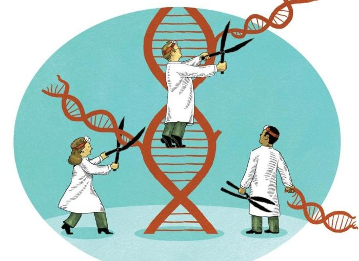 Precision Medicine Yields Better Outcomes for Clinical Trial Patients