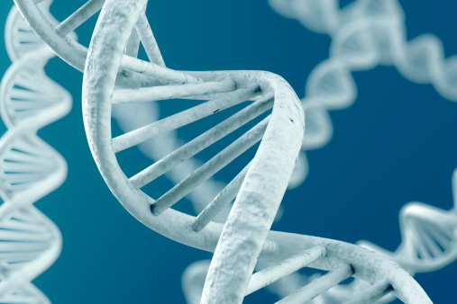 Gene Testing Could Help Predict Ovarian Cancer Patients' Sensitivity