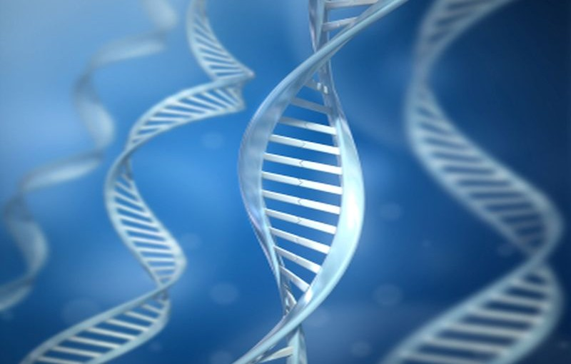 Genetic Screening Can Inform Women of Their Breast and Ovarian Cancer Risks