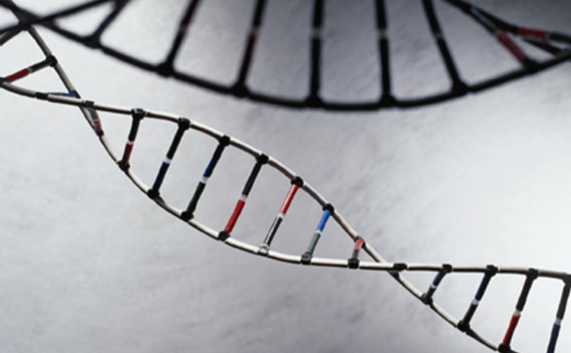 Study: Cancer-related genetic testing is rare for women on Medicare