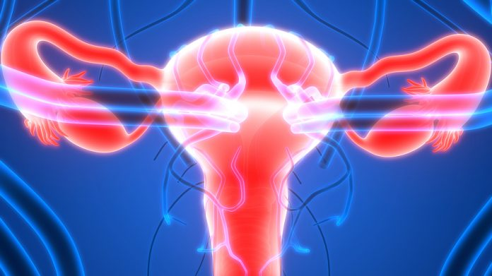 Blocking ovarian cancer's energy supply helps curb spread