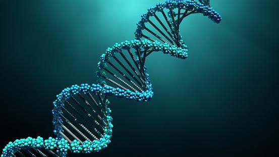 New BRAF Inhibitor Cancer Drug Shows Efficacy