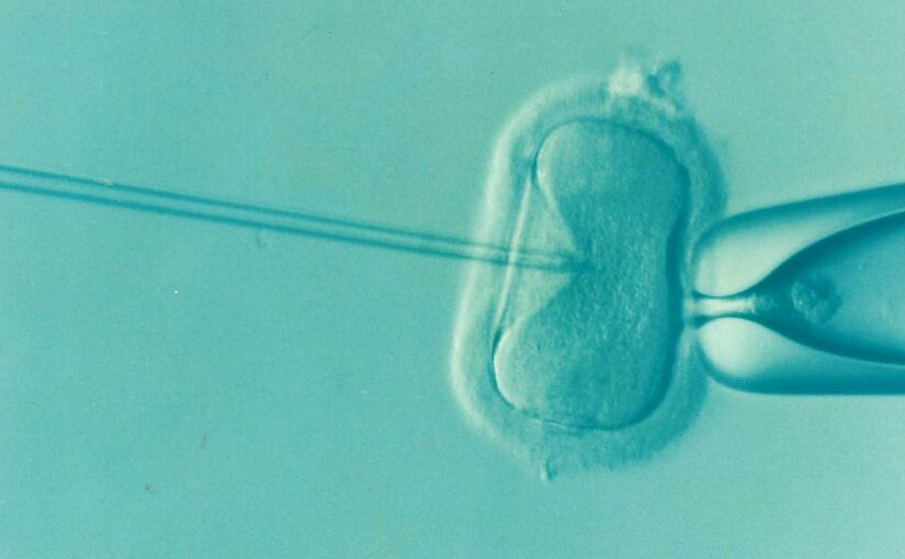 In Vitro Fertilization Does Not Increase the Risk of Ovarian Cancer