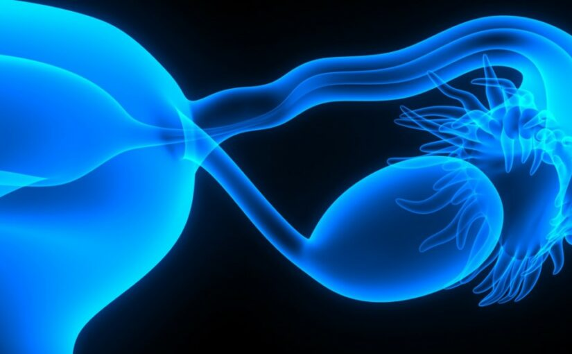 How ovarian cancers evade the immune system